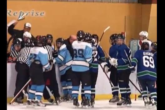 quebec hockey coach punch player