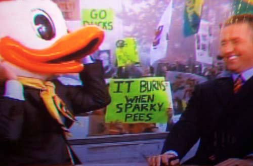 22 great funny ESPN college gameday signs - it burns when sparky pees