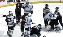 Check Out This WWE Style Hockey Brawl Courtesy of the AHL (Video)