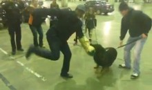 P.K. Subban Tries His Hand at K-9 Training During Lockout (Video)