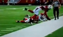 The Arizona Cardinals Gave Us the Best Defensive Play of the 2012-13 NFL Season (Video)