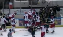 Epic Hockey Bench Brawl Between Huntsville Havoc and Mississippi Surge of the SPHL (Video)
