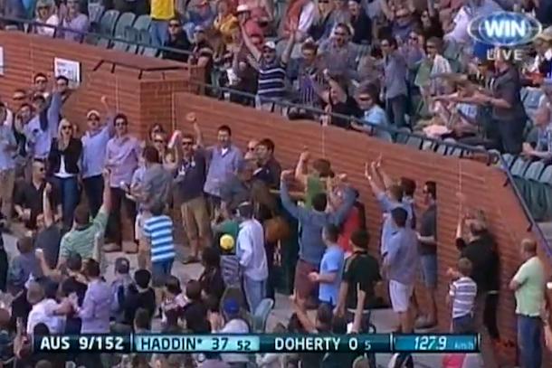 cricket fan one-handed catch