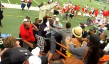Brawl in the Stands Spills Onto the Field During the Pro Bowl (Video)