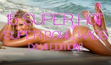 15 Super Hot Super Bowl WAGs [XLVII Edition]