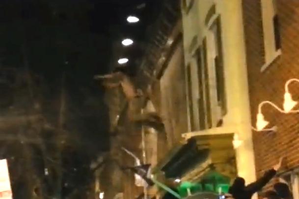 ravens fan jumps off building into tree