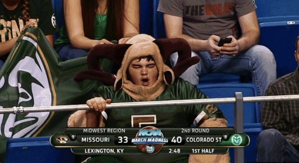 colorado state ram mascot fan