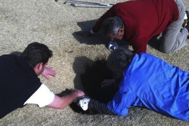 golfer falls in sinkhole