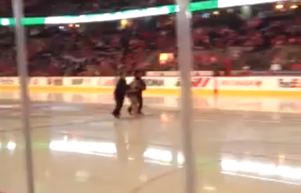saddledome streaker