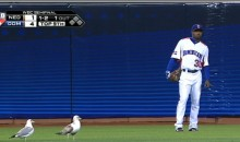 Seagulls Crashed Last Night's World Baseball Classic Semi-Final at AT&T Park (Video)
