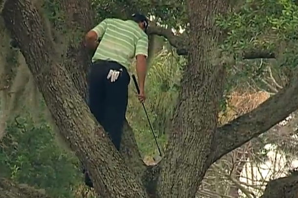 sergio garcia hits shot from tree