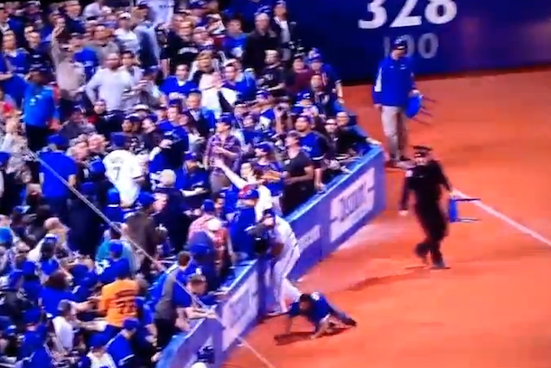 blue jays fan falls onto field