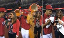 Nats Pitcher Gio Gonzalez and Attractive Sideline Reporter Julie Alexandria Get Doused with Gatorade (Video)