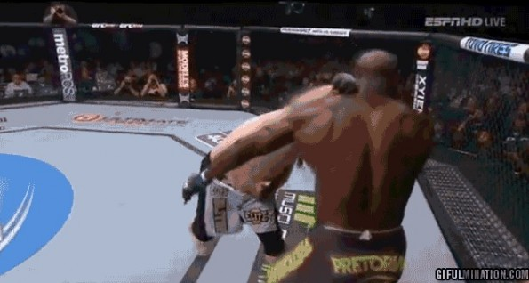 roy nelson knockout