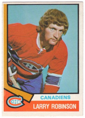 25 larry robinson mop - classic hockey hair
