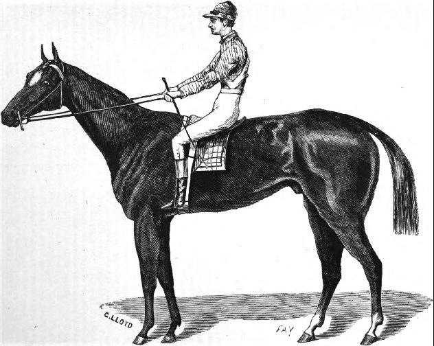 Aristides - first kentucky derby winner 1975