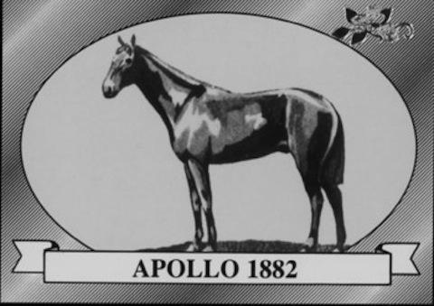 apollo 1882 kentucky derby