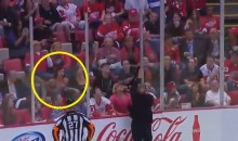Red Wings Fan Shakes Her Breasts at the Refs (Video)