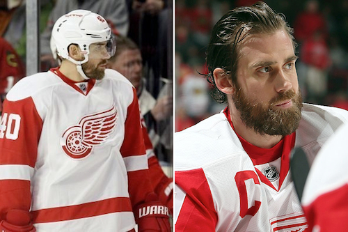 13 henrik zetterberg - 2013 NHL Playoff Beards