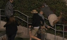 Fan Leaps Into Bushes at Petco Park While Chasing Home Run Ball (Video)