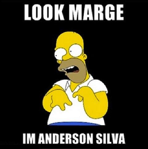 5-homer-simpson-imitating-anderson-silva-anderson-silva-knockout-memes