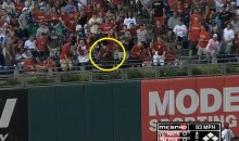 Fan Takes Anthony Rendon's Homer Off the Face (Video)