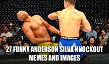 27 Funny Anderson Silva Knockout Memes and Images
