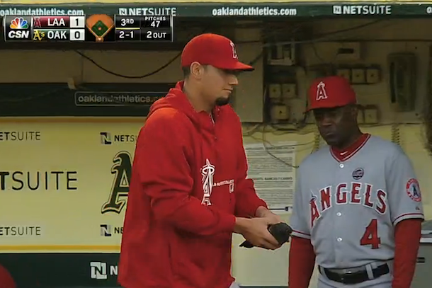 angels pitcher saves pigeon