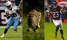Chris Johnson and Devin Hester Will Race a Cheetah for Nat Geo's 'Big Cat Week'