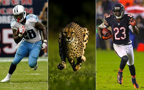 man vs. cheetah (chris johnson and devin hester)