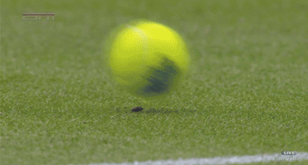 wimbledon bug slow-motion