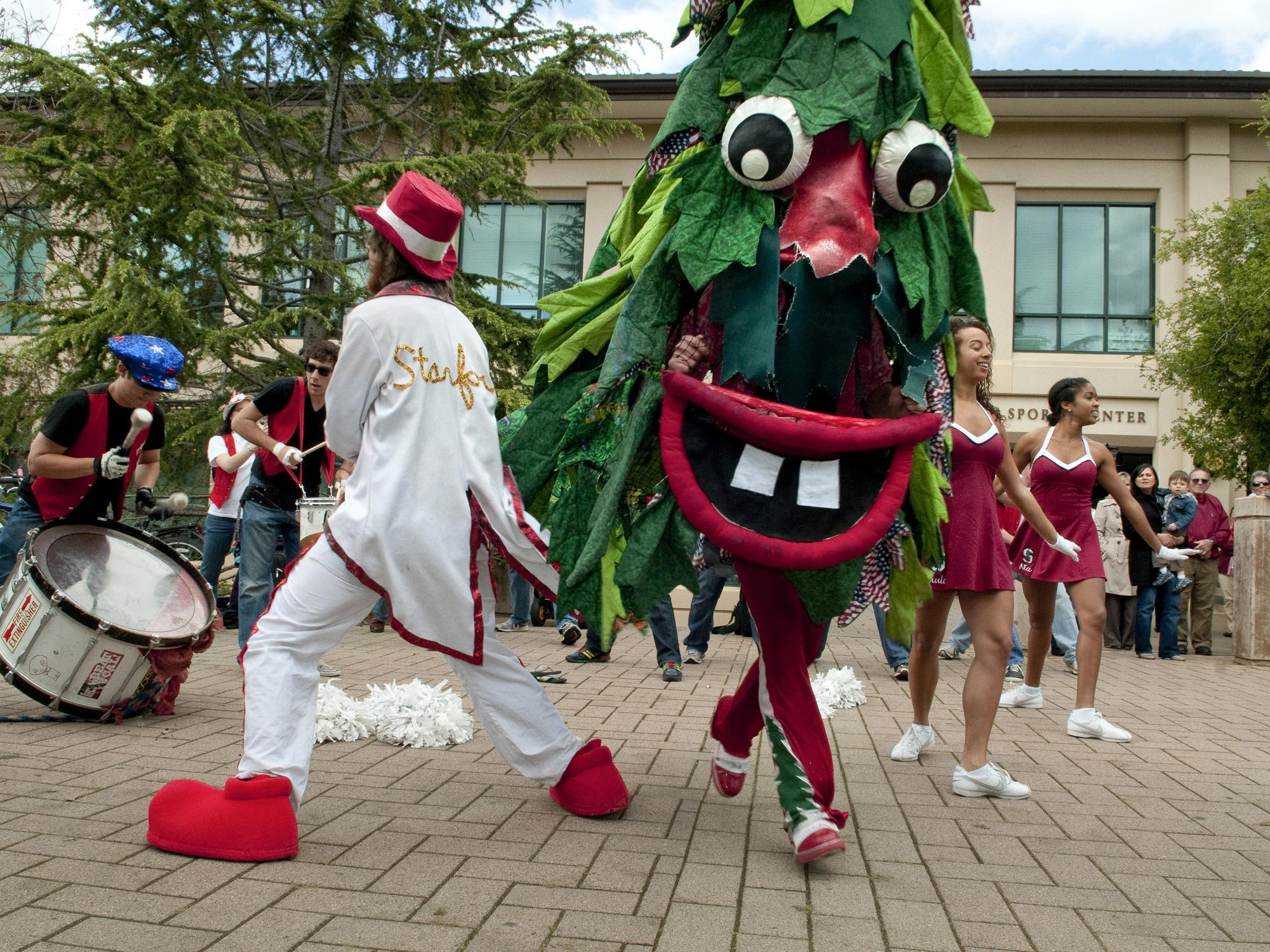7 stanford tree mascot - creepiest college football mascots