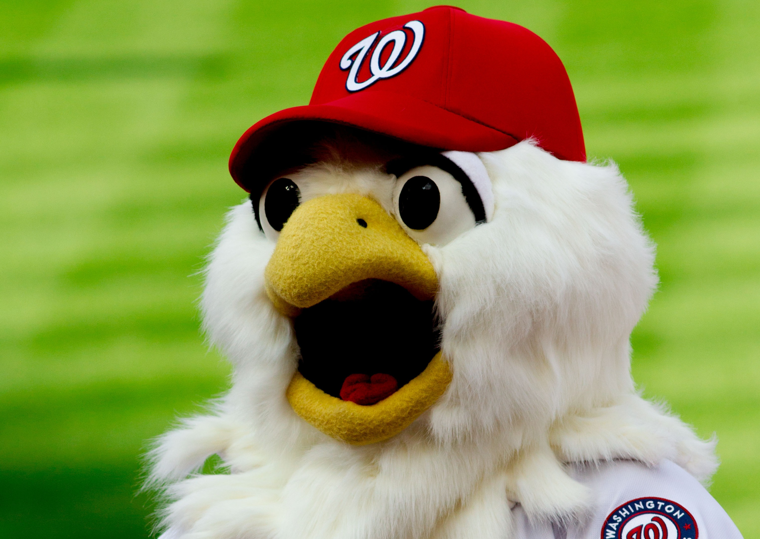 11-screech-nationals-mascot-disturbing-mlb-mascots