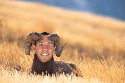 Sam Bradford, Rams