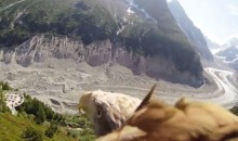 Incredible Video Shot with GoPro Cam Shows What It's Like to Fly Like an Eagle (Video)