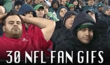 30 NFL Fan GIFs