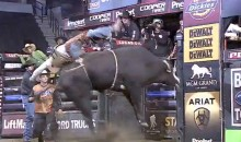 Pro Bull Rider Gets Head Smashed by a Bull's Horn and Thrown Into a Wall (Video)