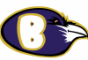 http://www.totalprosports.com/wp-content/uploads/2013/10/Baltimore-Ravens-520x331.png