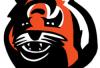 http://www.totalprosports.com/wp-content/uploads/2013/10/Cincinnati-Bengals.png