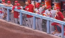 Cardinals Pitchers Keeping It Loose in Dugout During NLCS Game 4 Victory (GIF)