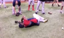 David Ortiz Gets Hit in the Groin with a Baseball (Video)