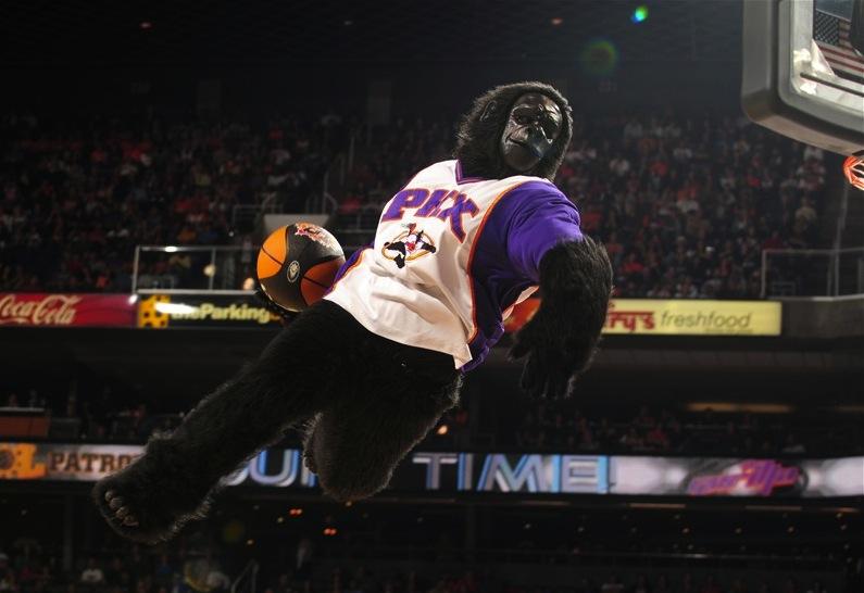 11 the phoenix gorilla (phoenix suns mascot) - creepy nba mascots