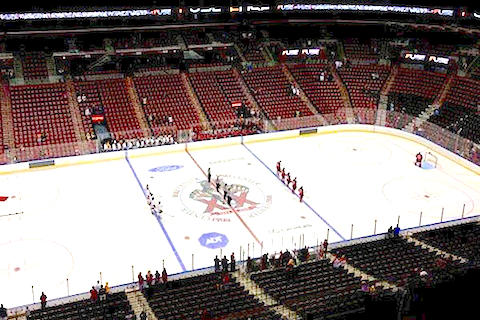 8 florida panthers empty seats - least valuable nhl franchises