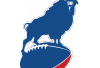 http://www.totalprosports.com/wp-content/uploads/2013/11/Buffalo-Bills-FC.png