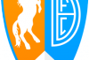http://www.totalprosports.com/wp-content/uploads/2013/11/Denver-Broncos-FC.png
