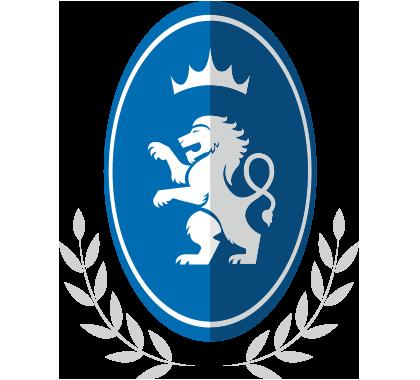 Detroit Lions FC