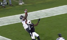 Andre Johnson Makes Incredible Catch (GIF)