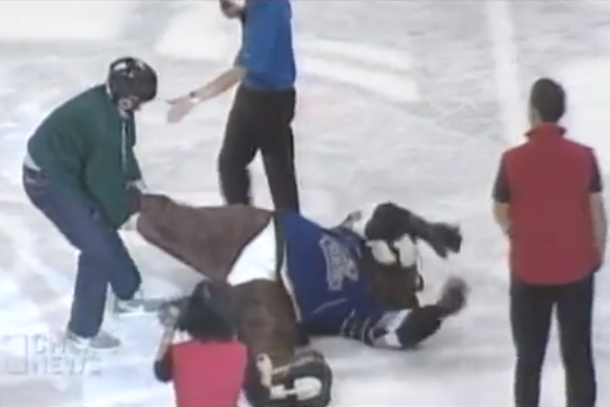 marty the marmot mascot attacked by fan