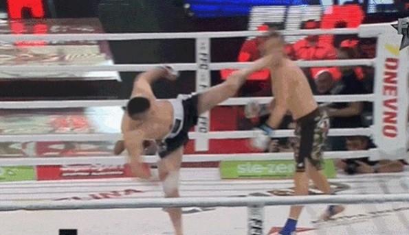 roundhouse kick KO