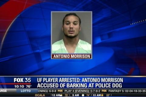 12 antonio morrison arrested barking at police dog - athletes on santa's naughty list 2013